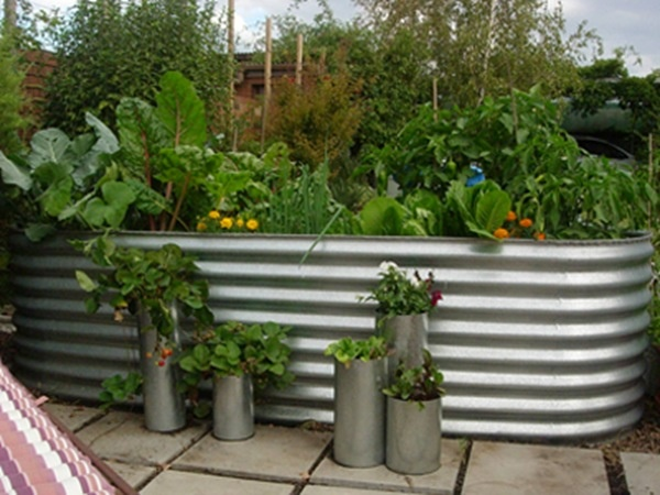 Corrugated raised veggie bed natural home building