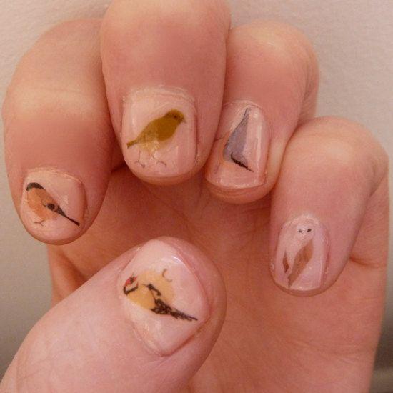 Mixed bird nail transfers by katebroughton on Etsy, £2.95