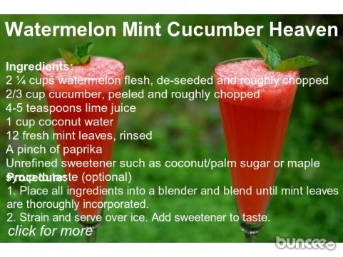 watermelon mint cucumber smoothie recipe buncee