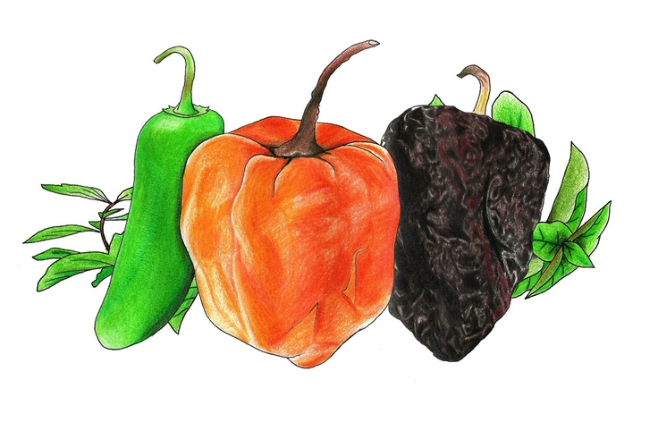 the logo for Carrillo's Roasted Habanero salsa