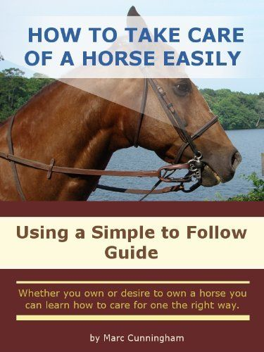 how to take care of a horse Learn how to feed, house, and care for your horse or pony  basic pulse  respiration temperature: learn how to take your horse's vital signs.