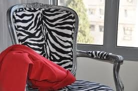 Dorm Room Ideas on Zebra Chair   College Dorm Room Ideas