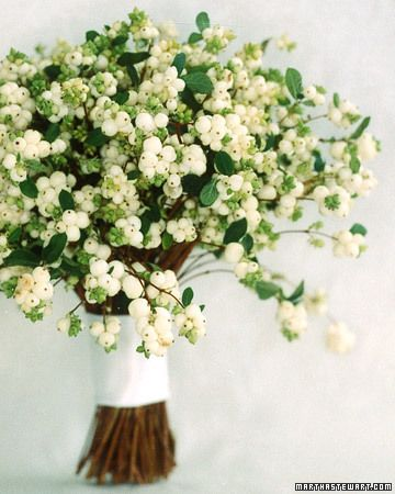 Snowberries, via Martha Stewart Weddings http://www.marthastewartweddings.com/