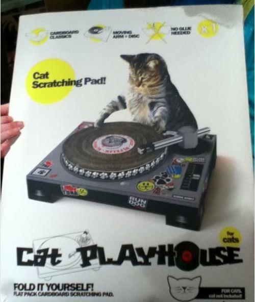 DJ Cat scratch pad. | Ideas Worth Xploding | Pinterest