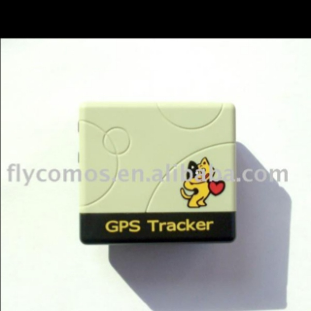 cat tracking collar iphone