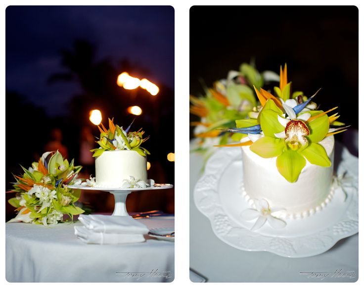 Big island hawaii cake ideas and designs