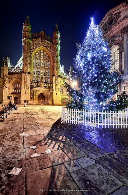 Bath Abbey, Christmas Tree, Roman Baths, Somerset, England