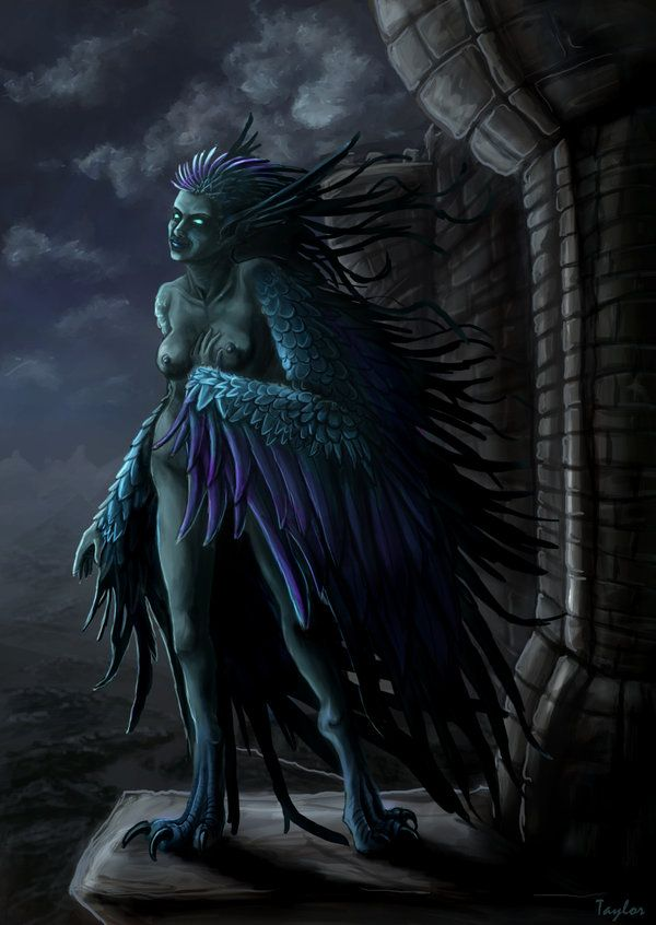 Morgana Le Frey