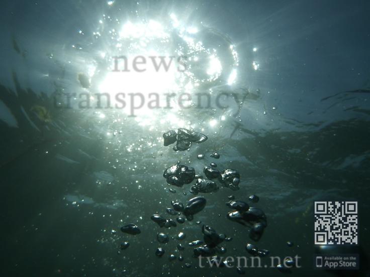 News Transparency - Tweeted News Network via twenn.net    #bubbles #enjoy #relax #sea #sun #vacations #beach #news #lifestyle #breaking #health #environment #app #iOS #twenn