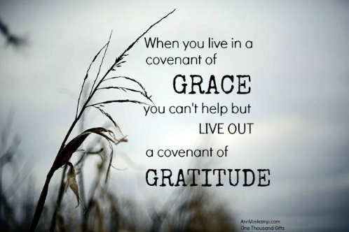 Grace amp gratitude grace amp gratitude pinterest