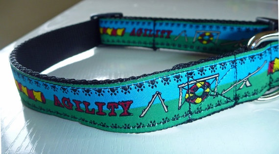 Agility Dog Collar Made to Order  Your Choice by katiesk9kollars, $12.00