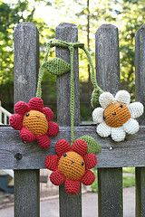 .sweet happy crochet daisies