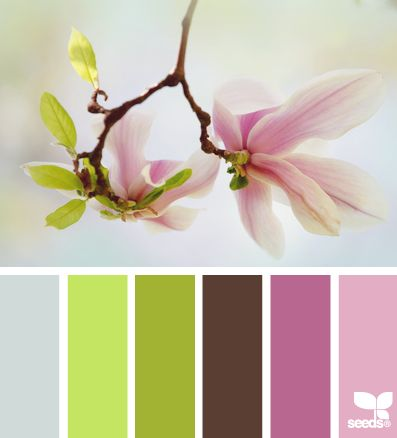 http://design-seeds.com/index.php/home/entry/blossom-hues2