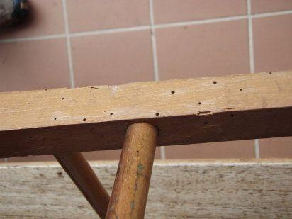 Decoracion mueble sofa carcoma tratamiento - Tratamiento carcoma muebles ...