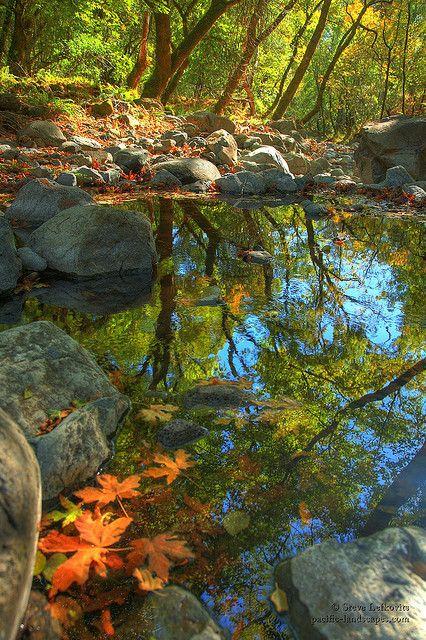 Jesen - fotografije - Page 5 23b15ec9f5a4de8f8fdfa42ff0c0c901