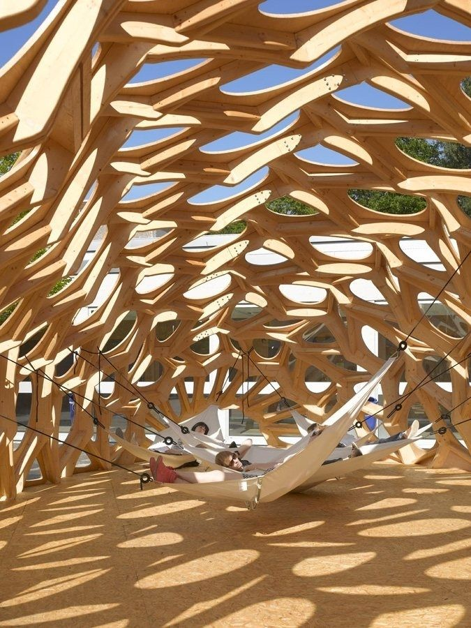 ... single-celled algae. Three-dimensional ribs of laminated wood with