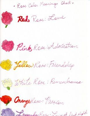 valentine rose number meaning