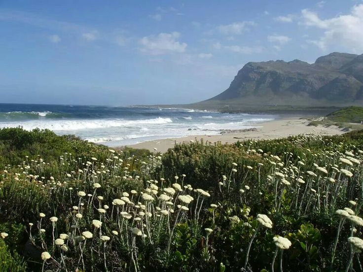 Kleinmond South Africa  city images : Beautiful Kleinmond,South Africa | Places and Holliday destinations f ...