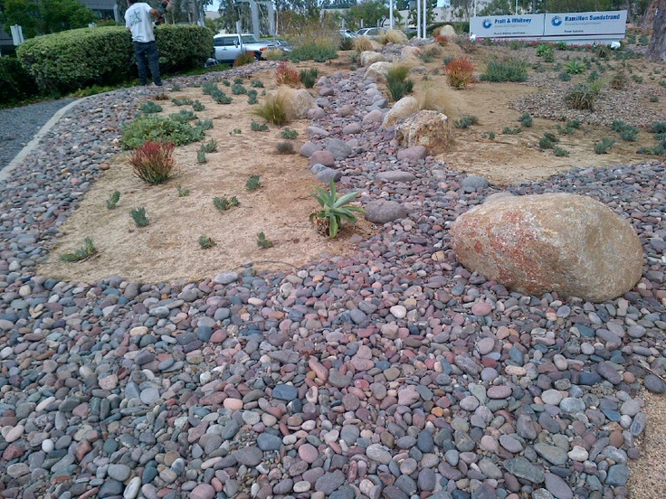 Succulents river rock garden ideas pinterest for What to do with river rock