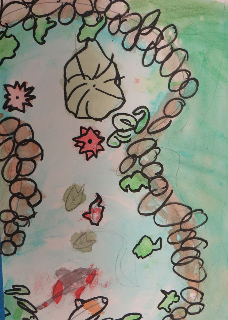 Koi fish pond drawing for Koi fish lifespan