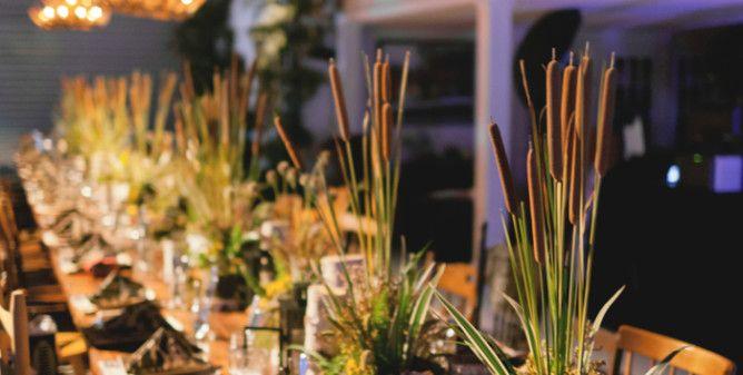 Blush by Brandee Gaar – Orlando, Florida Wedding and Event Planner ...