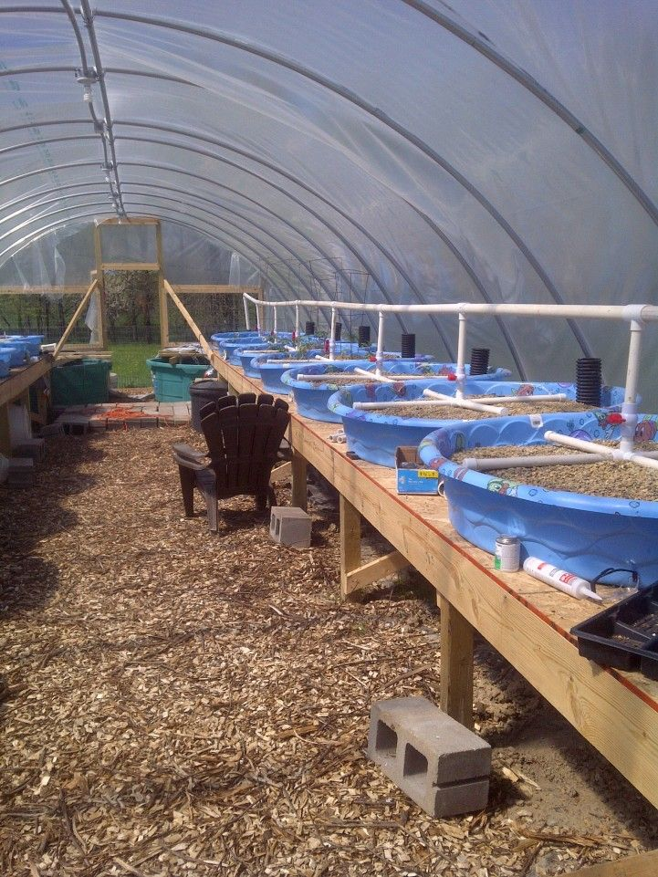Aquaponics system plans for Arizona aquaponics