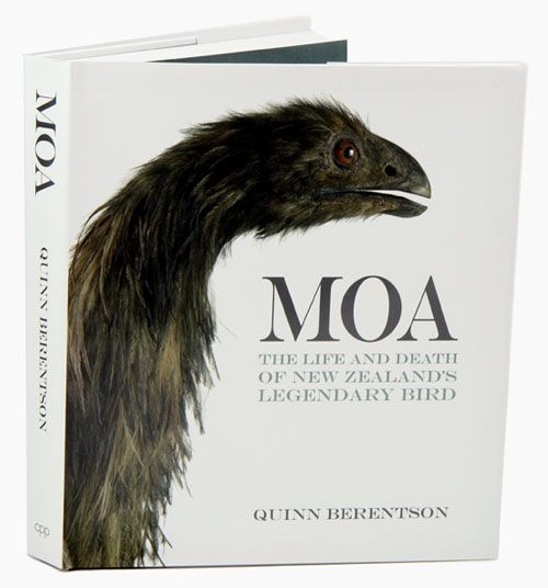 how to raise a moa
