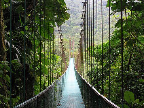Costa Rica - Hanging Bridges in Monteverde