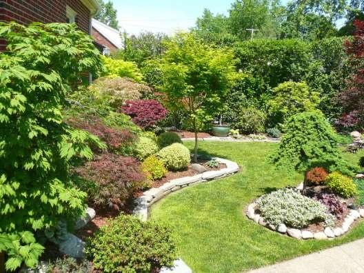 Garden Showcase: Japanese maple garden