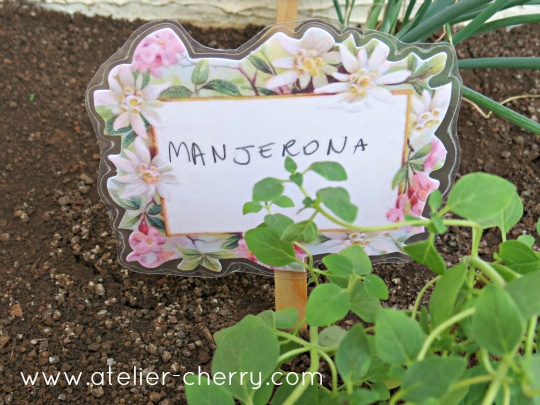 ATELIER CHERRY: Placas para horta