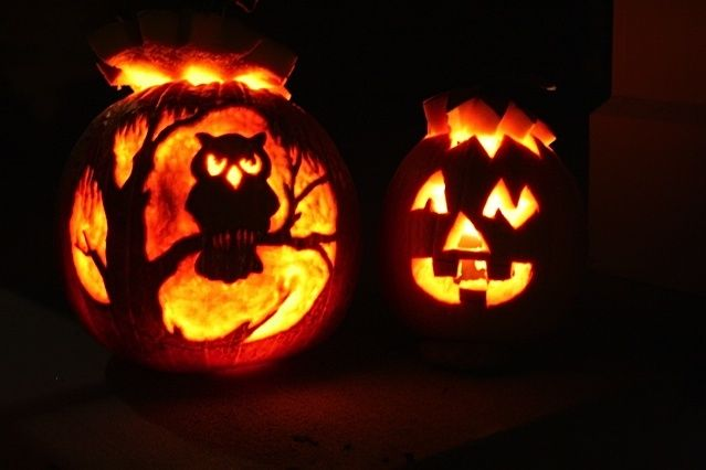 Owl pumpkin carving rad pinterest