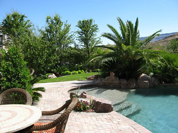 Tropical alternating landscaping landscaping pool ideas for Tropical backyard design ideas
