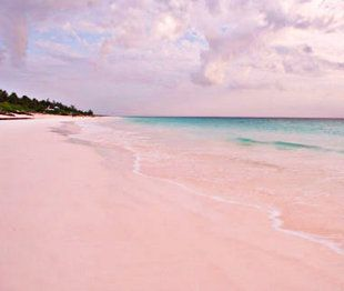 Pink Sands Beach, Harbour Island, Bahamas -- This tiny slice of the Bahamas has one of the Caribbean's prettiest beaches: three miles of pink sand. The red shells of foraminifera—single-celled marine animals—mix with the island's white sand, thus creating the soft rosy hue.