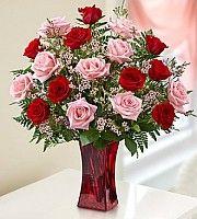 amazon.ca valentine's day