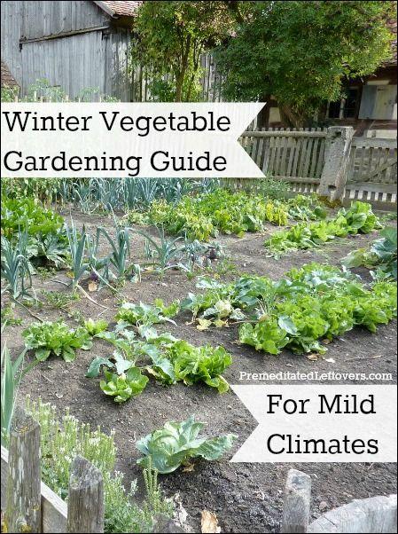Winter vegetable gardening guide for mild climates for Vegetable gardening guide