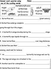 Spelling Words   Education   Pinterest