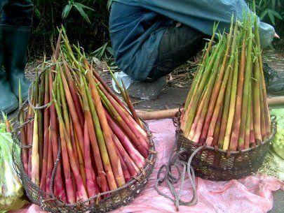 Măng chua được chế biến tại Sapa