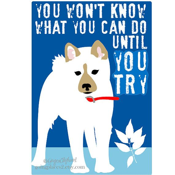 Shiba Inu Puppy Art for Children 5x7 Motivational by GoingPlaces2, $13.00