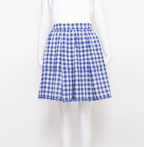 blue gingham skirt 150 worth