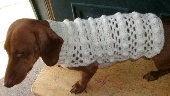 Crochet Dog Sweater Fits Dachshund s by copperllamastudio on Etsy, $3 ...