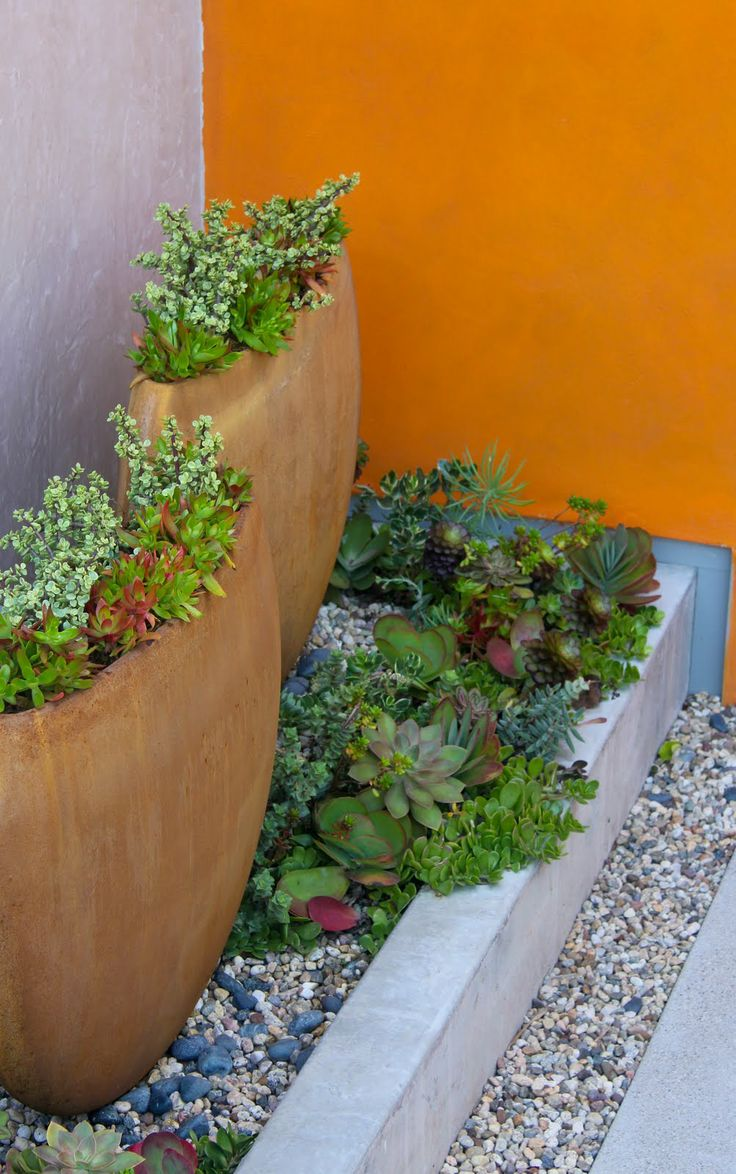 Pin by Jacquelyn Gray on Gardening - containers & vertical | Pinterest