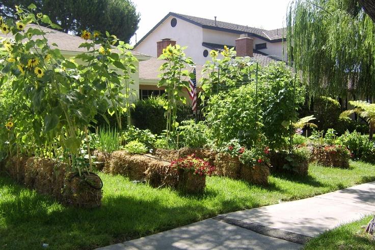 Straw Bale Gardening Garden Ideas Tips Pinterest