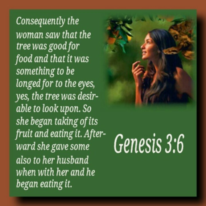 Now The Serpent Was More Subtil Than Any By Bible Like
