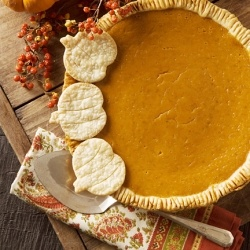 Silky Smooth Pumpkin Pie by pictureperfectmeals... love this cute ...