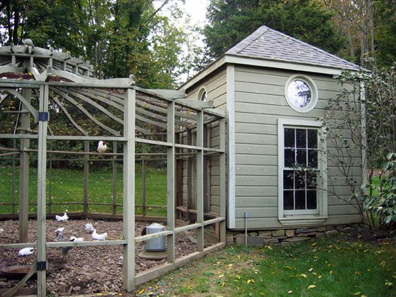 Bunny Williams 39 Coop And Gazebo Run Chicken Coops