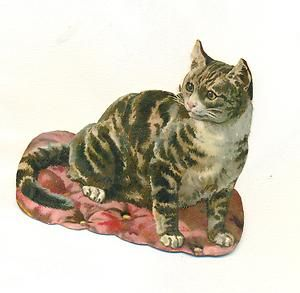 "Victorian scrap probably by Helena Maguire. See similar cat in board ""Helena Maguire, 1 of 2,"" below."