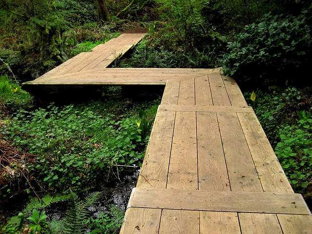 nice wooden walkway Paden in de tuin Pinterest