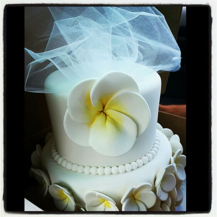 pinterest bridal shower cakes party invitations ideas. Black Bedroom Furniture Sets. Home Design Ideas