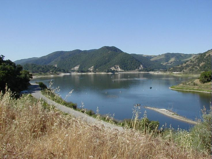 Pin by paul bailey on central california coast pinterest for San luis reservoir fishing report