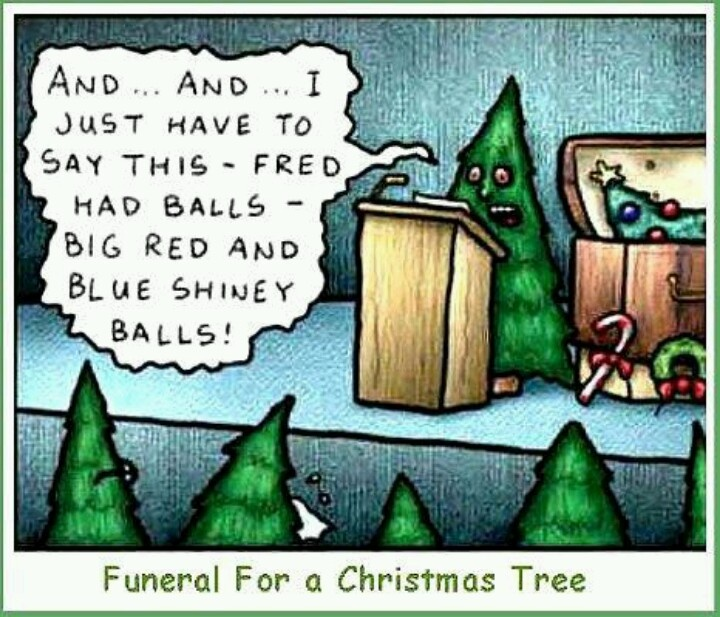 Merry Christmas. | Funny! | Pinterest